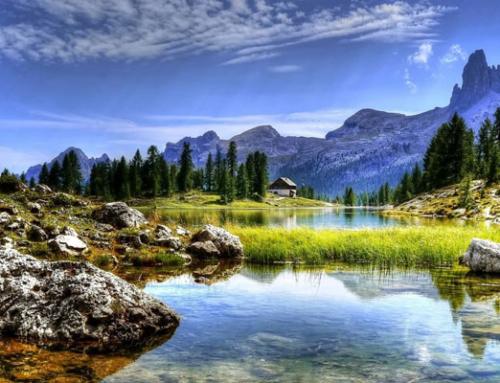 Settimane relax alla scoperta della Foresta dei violini tra le Dolomiti