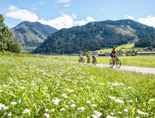 Offerte estate 2021 in Val di Fiemme